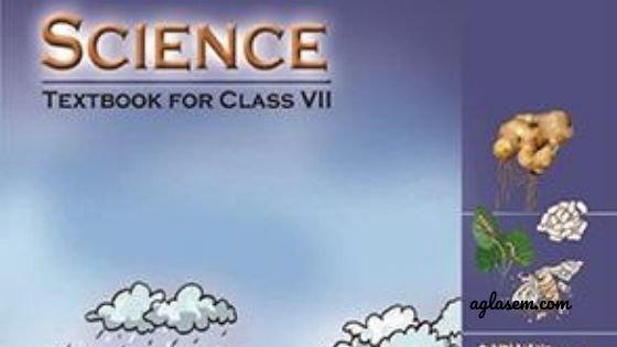 Class 7 Science Exam